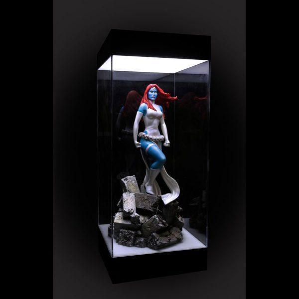 Light-Up Acrylic Display Case